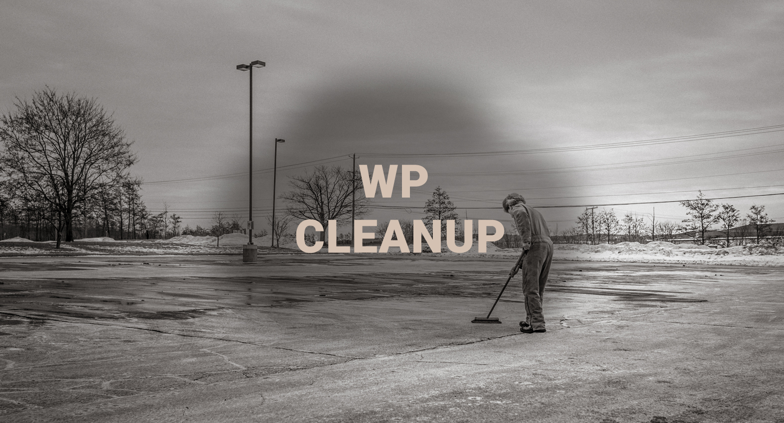 WP cleanup Project Screenshot